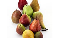 Menu pear varieties